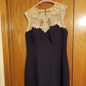 Alex Evenings Navy Nude Embroidered Dress Size 10